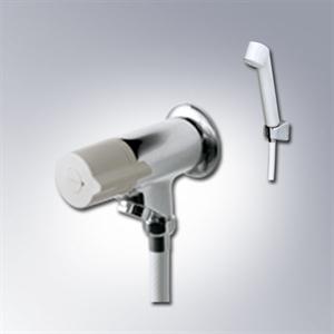 Sen tắm nước lạnh INAX BFV-10