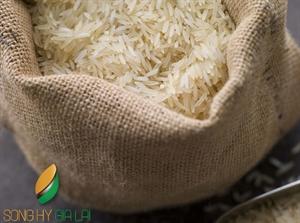 Vietnamese Parboiled Rice 5% Broken