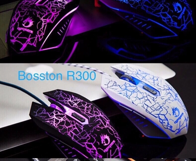 Mouse Bosston R300W