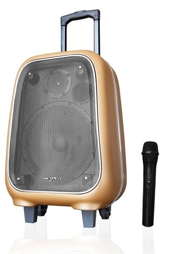 Loa SoundMax Karaoke M-6