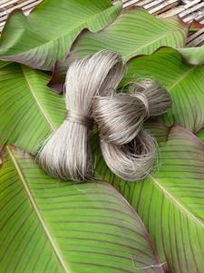 sản phẩm miến dong Việt Cường