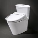 Lý do nhà vệ sinh sạch nhưng vẫn có mùi hôi ?