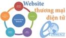 Website của Công ty có phải là website thương mại điện tử?