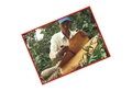 Quế Trà Bồng Quảng Ngãi được công bố là TOP 10 đặc sản thiên nhiên nổi tiếng Việt Nam