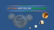 Phần mềm Kế toán HTX nông nghiệp