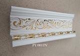 PT 001TV