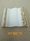 NT 801 TV