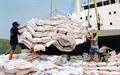 Xuất khẩu các nông sản chính đồng loạt giảm mạnh