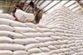 Xuất khẩu gạo năm 2015 sẽ rất khó khăn