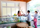DIENBIENSEED Nông nghiệp Điện Biên, 30 năm thành tựu