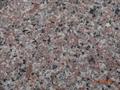 Thông báo tiếp nhận hồ sơ công bố hợp quy của sở Xây Dựng Gia Lai cấp cho Granite Tây Nguyên