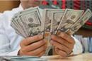 Tỷ giá tự do lập đỉnh mới 23.700 đồng/USDTỷ giá tự do lập đỉnh mới 23.700 đồng/USD