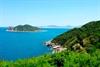 TP HCM mở tuyến tàu du lịch đến xứ 'Hoa vàng'