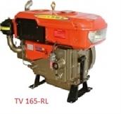 Động cơ THĐ TV 165-RL