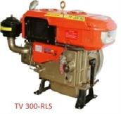 Động cơ THĐ TV 300-RLS