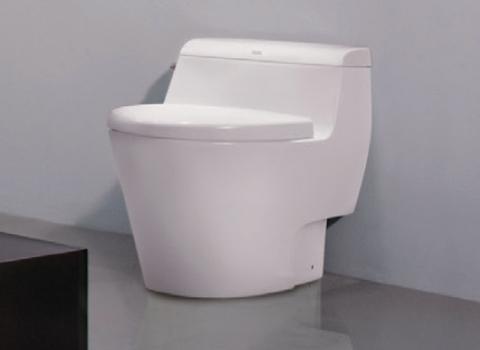 ban-cau-1-khoi-american-standard-2040-WT